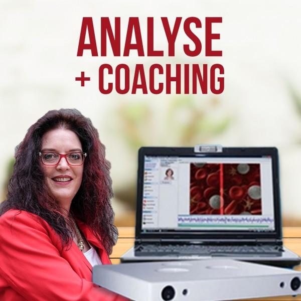 Timewaver Analyse-persönliches Coaching