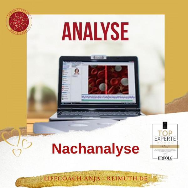 Timewaver Nachanalyse